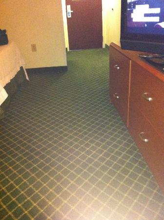 Fairfield Inn & Suites Charlotte Arrowood: old carpet