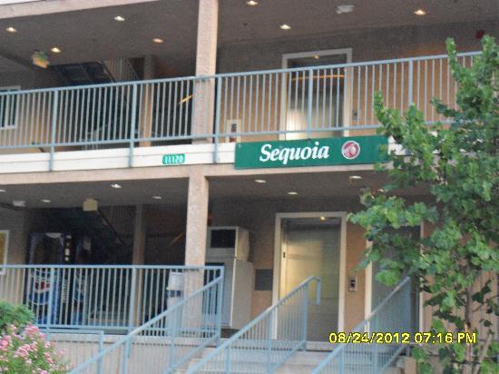 يوسميتي فيو لودج: We stayed in the Sequoia building