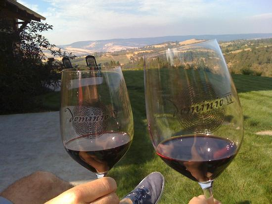 Three Sleeps Vineyard B & B: Toasting with our complimentary glasses of FABULOUS red wine!