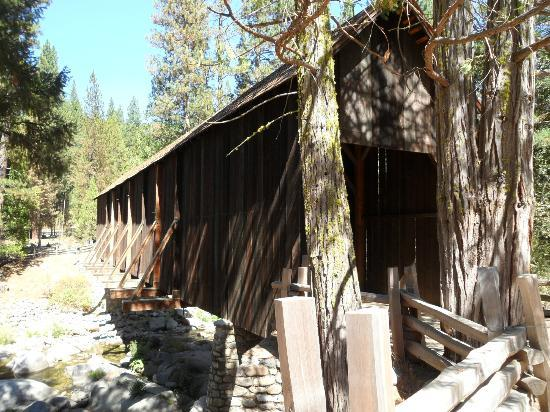 Pioneer Yosemite History Center: Covered tunnel