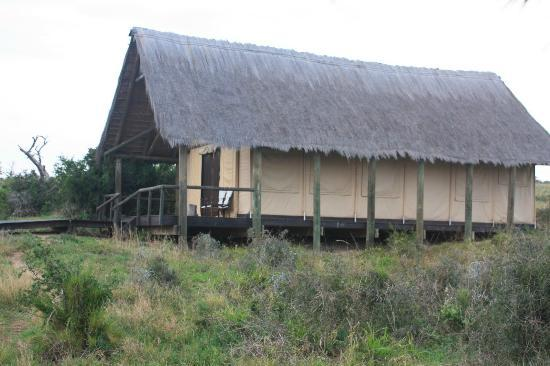 Gorah Elephant Camp: The exterior of the tent