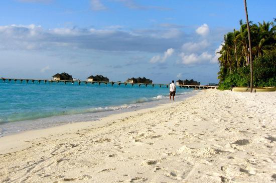 Gili Lankanfushi Maldives: a walk