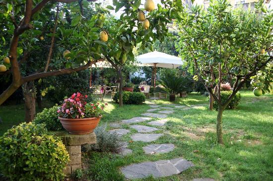 B&B Il Roseto: Garden