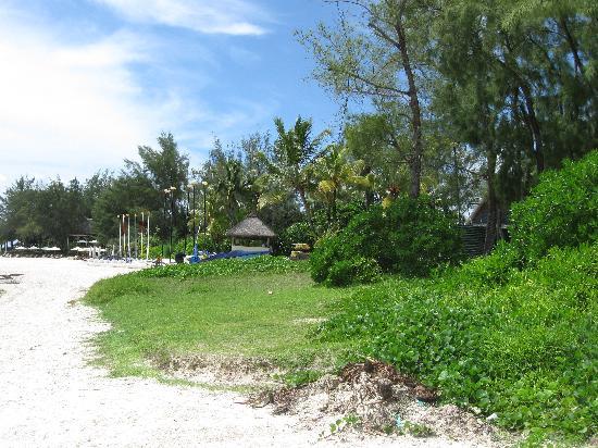 Asso Villa: la spiaggia