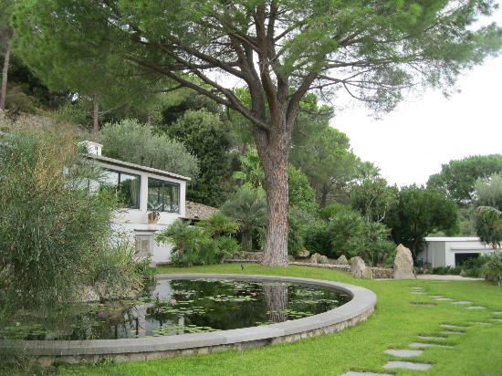 Garden & Villas Resort: le ninfee
