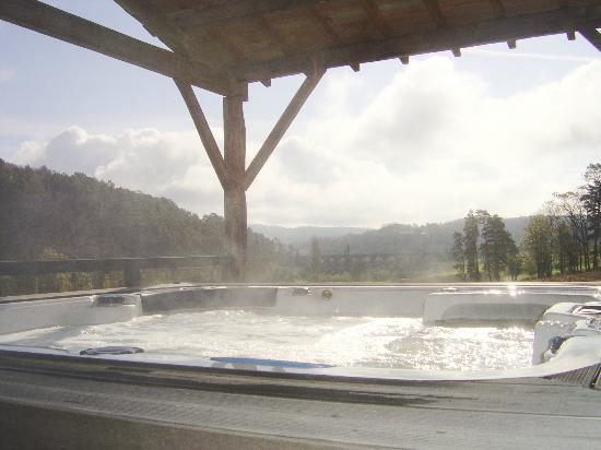 Domaine du Champ de l'Hoste : spa