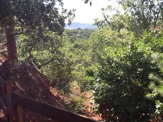 La Colline des Ocres : vue de la terrasse