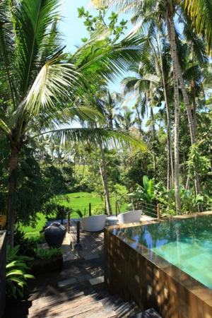 Swarapadi Villa: close to nature