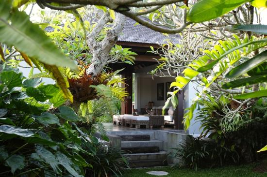 Swarapadi Villa: the greenery around the villa....calm and comfort