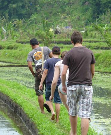 Amanaska Bali: sensation unique : balade dans les rizières
