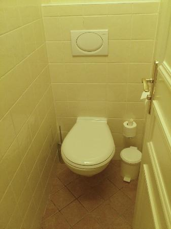 Le Relais Saint-Honore: Small toilet, but clean!