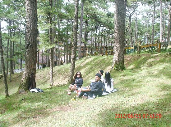 The Manor at Camp John Hay: Picnic