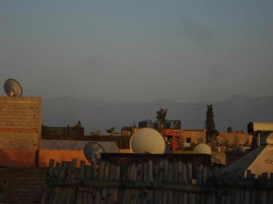 Riad Hidden : Vu de la terrasse