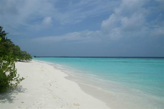 Soneva Fushi Resort: Beautiful Beach