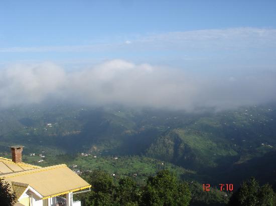 Te Aroha Dhanachuli : View from the Room
