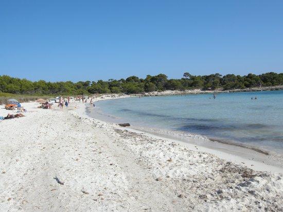 Platges de Son Saura