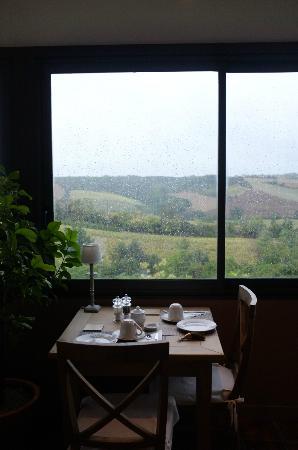 Cuq en Terrasses: Vue du jardin d'hiver