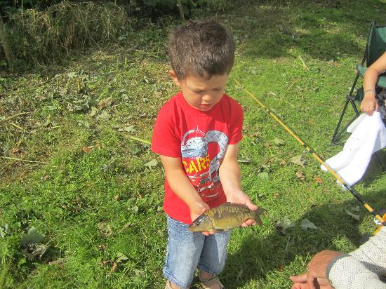 St. Tinney Farm Holidays: Can I hold a fish too grandad?!!