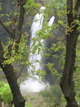 Dabhosa Waterfall Resort, a Nature Trails resort: Dabhosa Waterfall