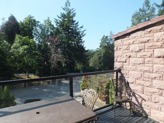 Hilton Grand Vacations Club at Craigendarroch Lodges: view from the balcony
