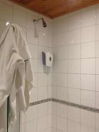 The California: Shower - soap dispenser did not work