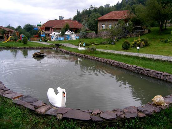 Lerik, أذربيجان: Garden