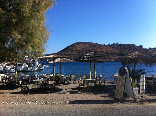Delfini Hotel: La spiaggetta privata antistante l'albergo