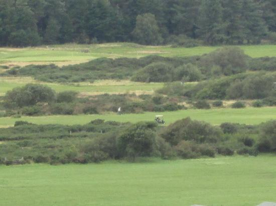 Royal St. David's Golf Club: 6th Hole from Harlech Castle