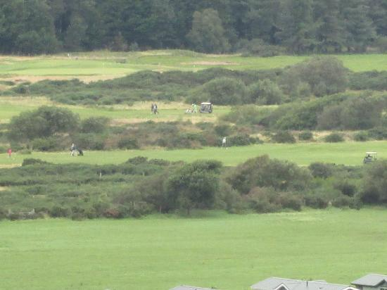 Royal St. David's Golf Club: Fairways from Harlech Castle