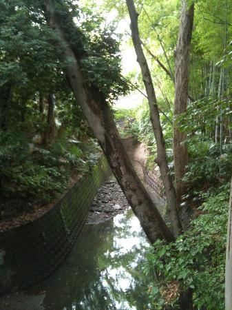 Todoroki Valley: 入口付近の風景
