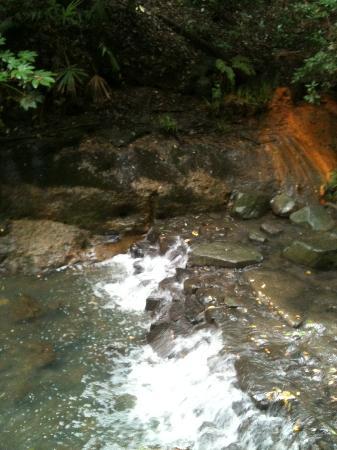 Setagaya, Japan: 川の流れ