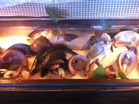 Ristorante Checco al 13 : il pesce e' fresco
