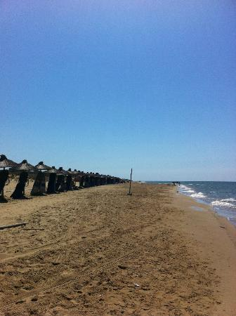 Olympia Golden Beach Resort & Spa: οι ξαπλώστρες και η εξυπηρέτηση με το χαμόγελο του Τάσου...