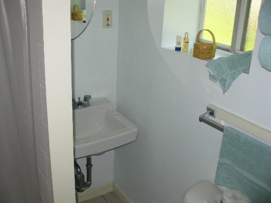Faircrest Motel: Small CLEAN bathroom