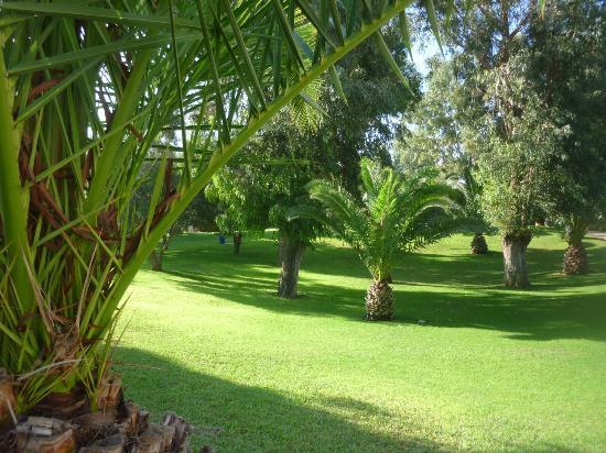 Club Med Agadir: jardin
