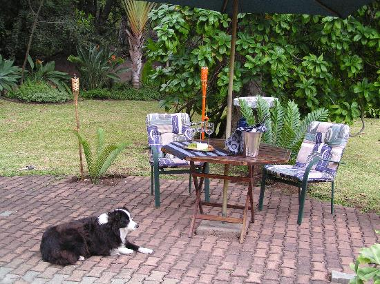 Arimagham Guest House: Sundowners in the Garden with Fly
