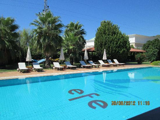 Efe Hotel Gocek: Piscina