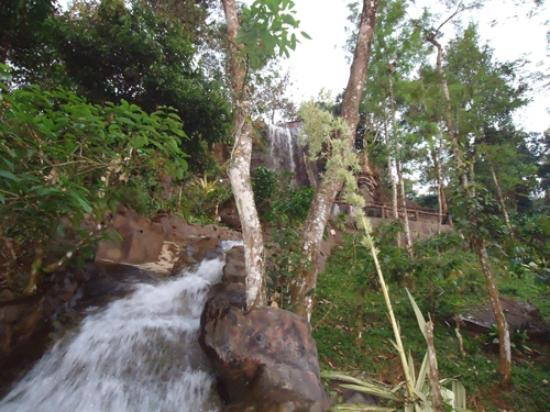 Vythiri Village Resort: Artificial Waterfall