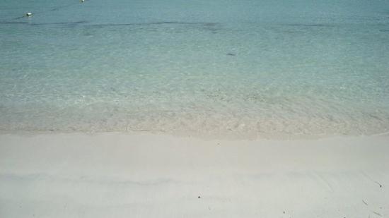 Media Luna Beach: Media Luna/ Vieques Puerto Rico
