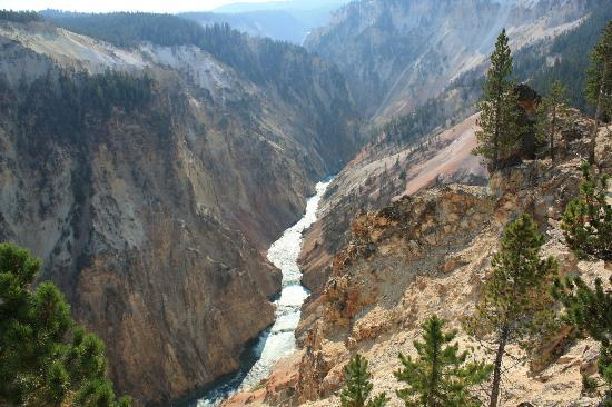 Inspiration Point: Yellowstone River e canyon da Inspiration Poit