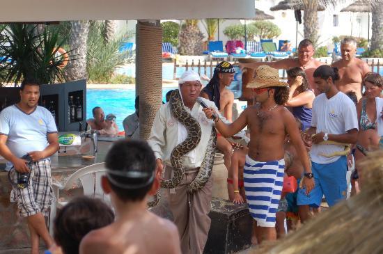 Fiesta Beach Club Djerba : Animation au bord de la piscine