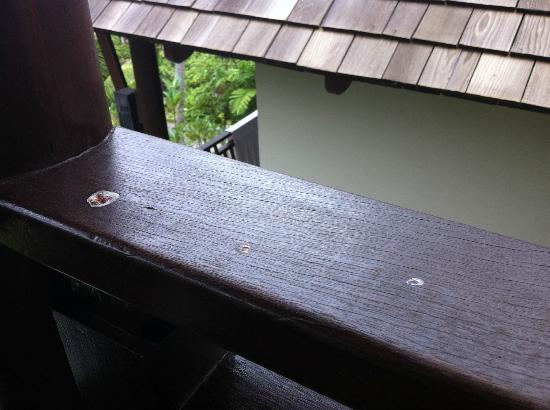 Bhundhari Spa Resort & Villas Samui: More bird excrement.