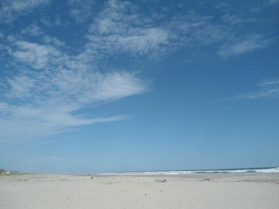 Hotel Pacific Paradise: LIndo paisaje de la playa