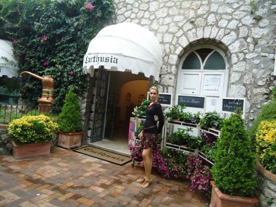 Carthusia: Piccola esposizione all'ingresso dei Fiori di Capri