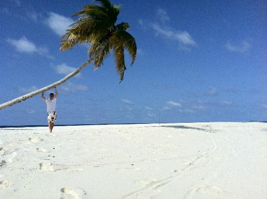 คอนสแตนซ์ ฮาลาเวลิ รีสอร์ท: Beach