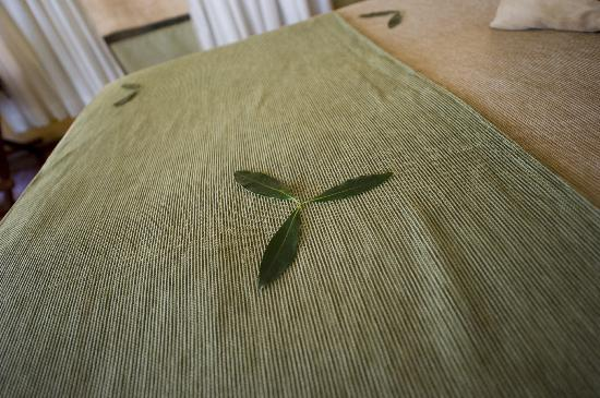 Karen Blixen Camp: Elephant Pepper Leaves on Bedding, in towels, everything!