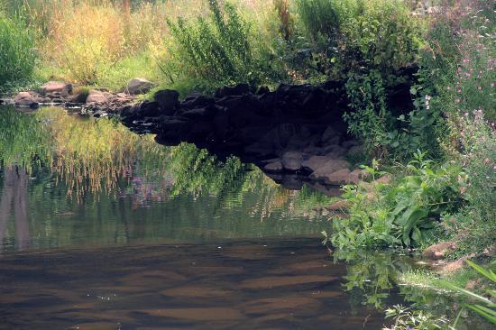 Unicorn Inn: River view