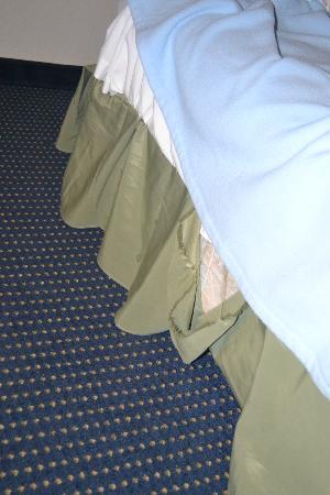 Americas Best Value Inn Wisconsin Dells: Bed skirt ripped all over