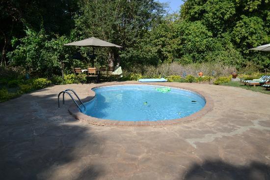 Murera Springs Eco Lodge: piccola piscina