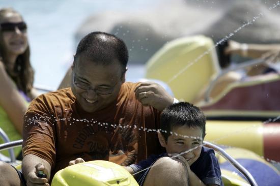 Adventure Sports in Hershey : Bumper Boats